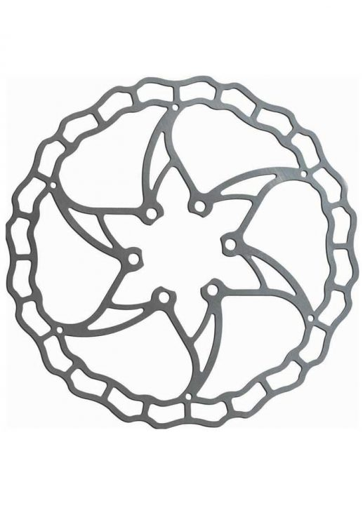 ashima-disc-ai2